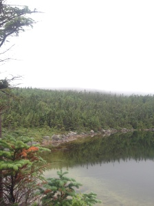 Chimeny Pond, July 10 2016